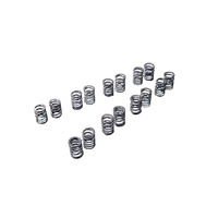 Tomei Valve Spring Set - Nissan CA18